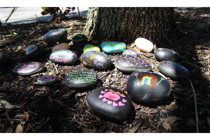 Everyone that attended the pet memorial event placed rocks under the memorial tree at the funeral home.